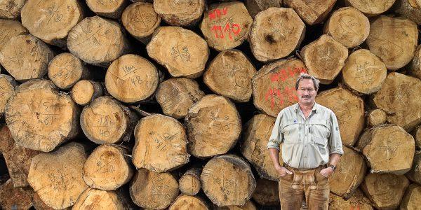 Fotograf im Allgäu Businessfotografie und Portrait - Reportage Sturm und Starkholzüberschuss in Bayern für Waldsäge Fuchstal, Fotografie Kees van Surksum